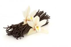 vanillabeans-250x166